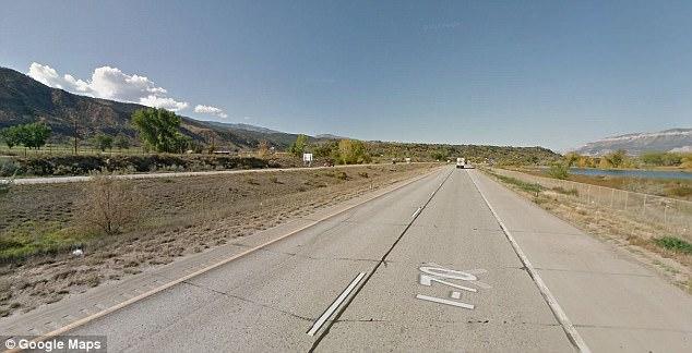 汽车高速公路撞熊后侧翻 致3人1熊死亡 高速公路 重伤 科罗拉多州