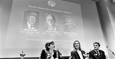 三名美国科学家获诺贝尔生理学或医学奖