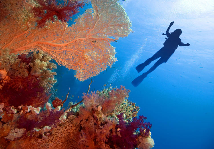 红海 50 座岛屿将变成豪华度假目的地,布兰森决定投资