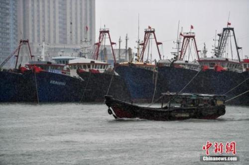 资料图:台风来袭,渔船回港避风。 中新社记者 骆云飞 摄