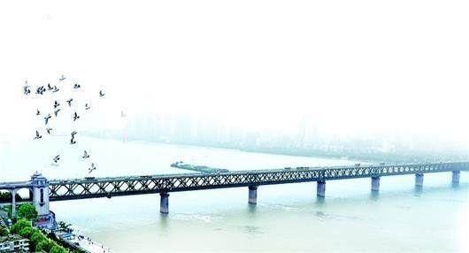 图为:一群鸽子飞过武汉长江大桥武昌桥头堡上空