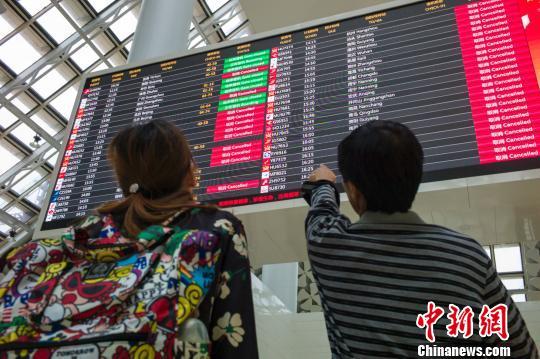 图为两位游客在海口美兰国际机场检察航班信息,电子显示屏上大部门航班已经被作废。 骆云飞 摄