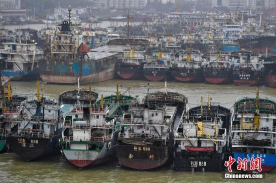 10月15日,海口新港码头停靠着众多回港避风的船只。中新社记者 骆云飞 摄