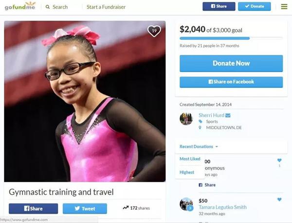 雪莉发起的gofundme筹款页面。 gofundme网页截图