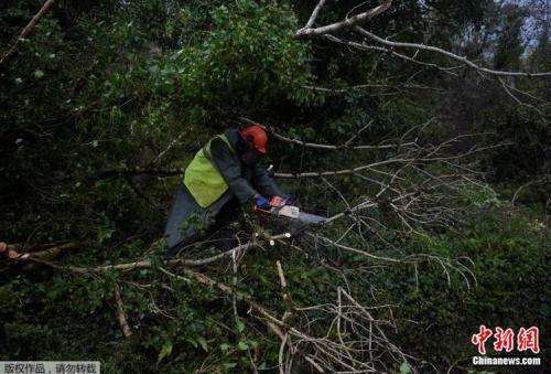 虽然其威力在登陆爱尔兰海岸之前就已减弱为风暴,但仍造成巨大破坏。