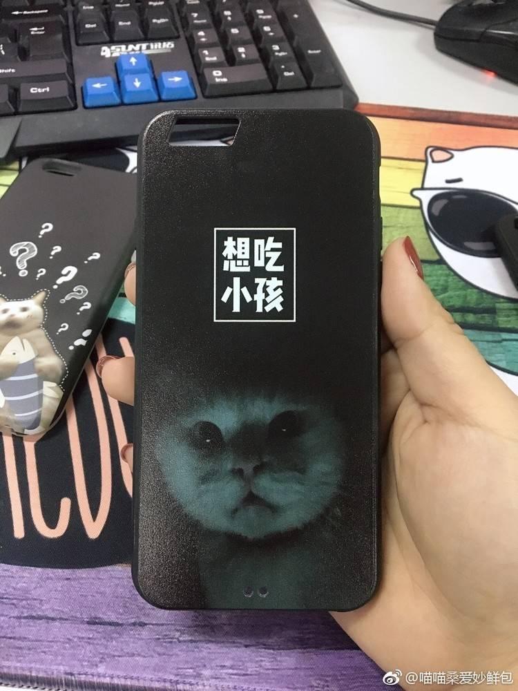 你连名字里猫的表情都不开心,还敢说爱猫?知道下载大全表情图片2015图片