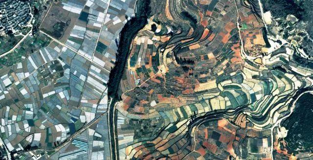中国抽象派油画