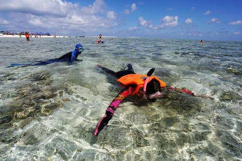资料图片:2014年9月3日,游客在西沙原生态岛屿银屿岛体验潜水。新华社发