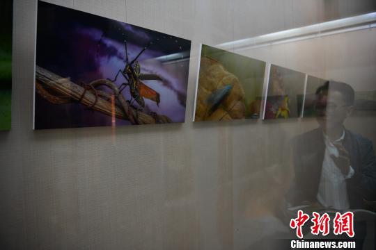 图为展览现场。 刘冉阳 摄