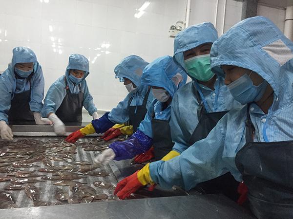 冯氏爱在保通公司打工2年,主要做海鲜清洗、包装等工作,每月工资2200-2800元,这比她在越南赚得多,她所在的村有20多人在保通公司打工。