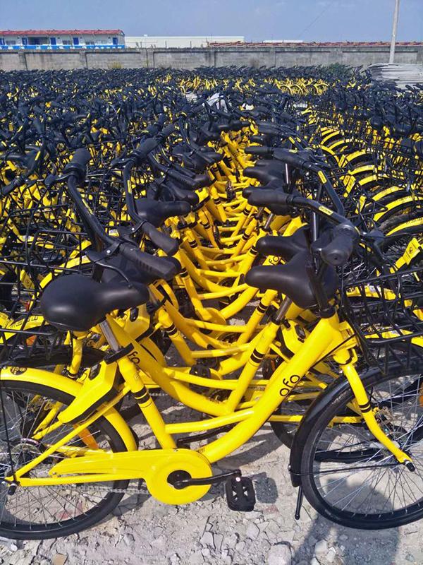 顾唐路空地里码放的单车,绝大多数看上去全新。