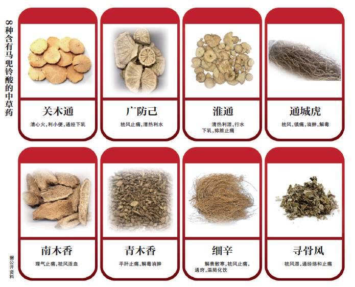8种含有马兜铃酸的中草药。图/新京报网