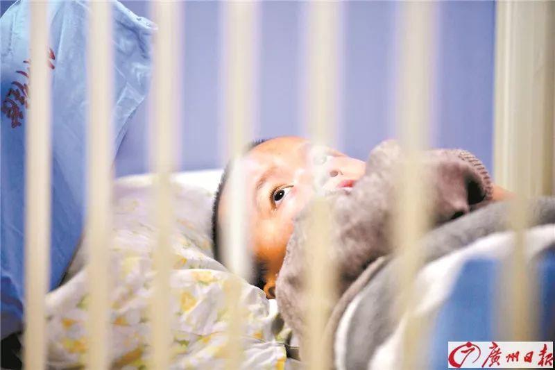 转发寻人!佛山5岁男孩患肿瘤父母失联,找不到父母无法手术,随时有生命危险!