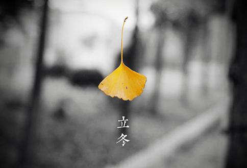 今天立冬,老规矩,吃饺子 每日轻松一刻11月7日晚间版