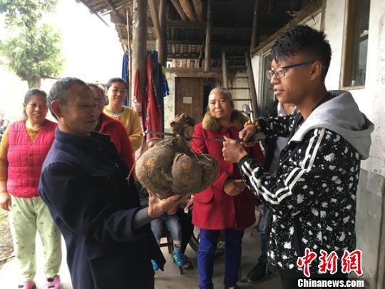 男子将17条活体蛇装在快餐盒里在深圳福田口岸入境被查