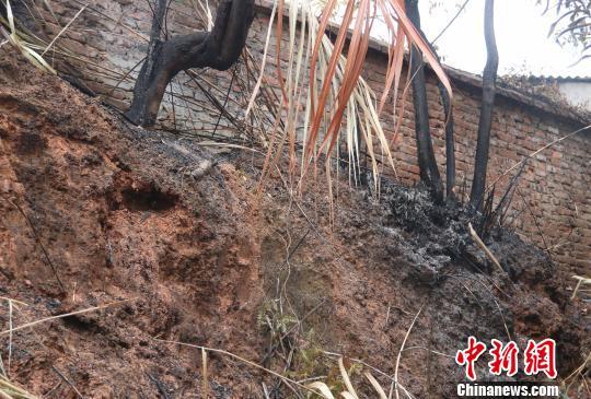 近日,福建南平查获一起连续五日突发山火案。图为火灾现场之一。 丁晨 摄