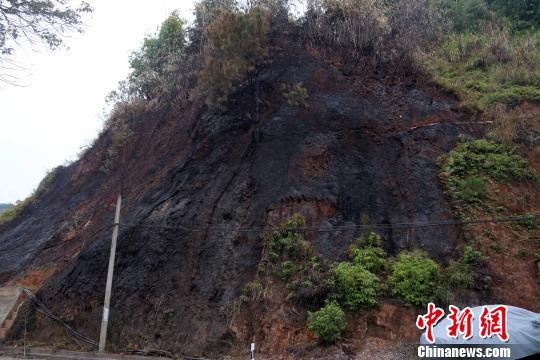 近日,福建省南平市区黄墩辖区环城路附近的山林连续多日突发大火。火灾现场之一。 丁晨 摄