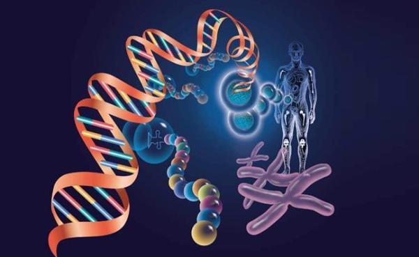 美国谍报机构将基因编纂技巧列为潜伏的年夜范围杀伤性兵器。