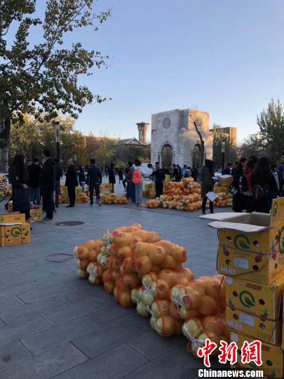 图片为天津大学宣传部提供。