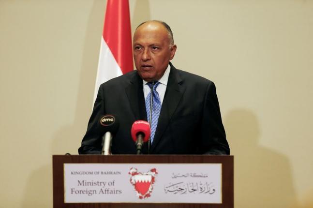 埃及外交部长舒克里