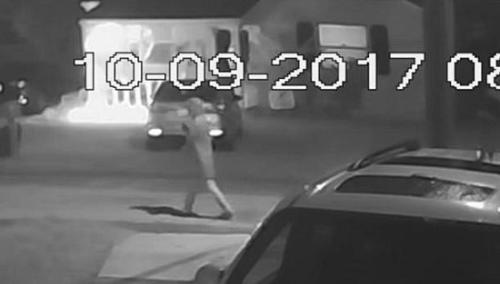 坦帕警方公布的拍下疑似嫌犯身影的监控录像。(图片来源:坦帕警察局)