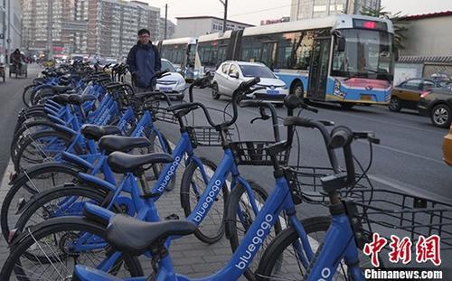 资料图:共享单车  中新社记者 贾天勇 摄