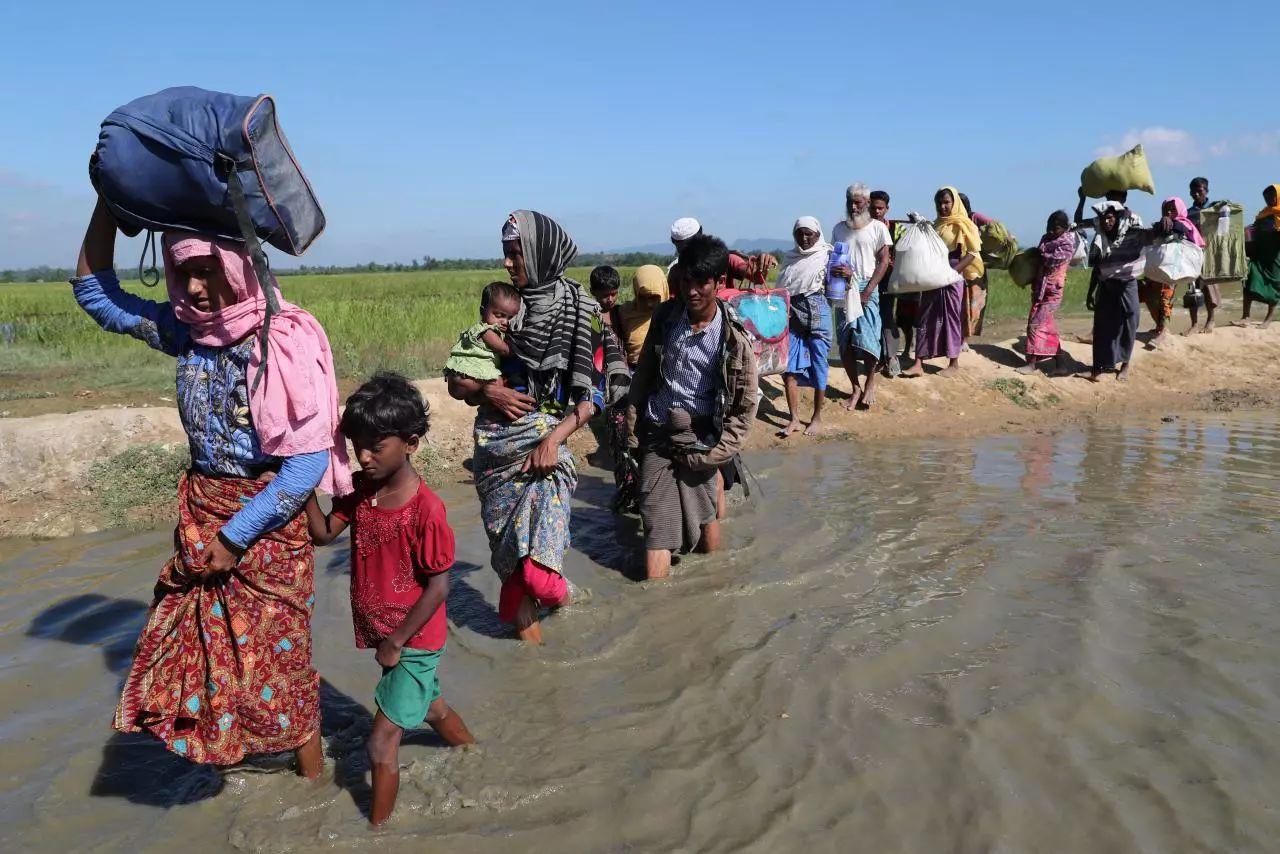 ▲孟缅边境的罗兴亚难民(路透社)