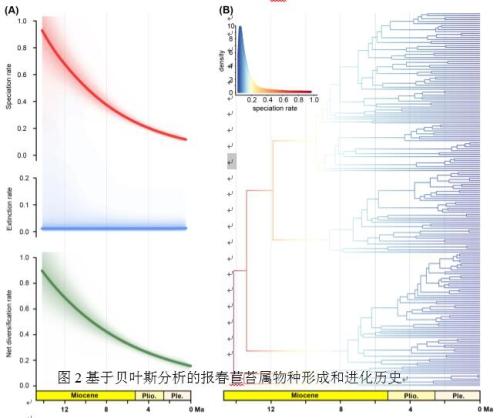 华南植物园历史气候变化与喀斯特植物物种形成研究取得进展