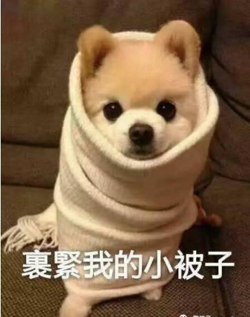"""冻!明天起到周末冷空气持续补货,广州成功入秋啦,今年夏天为十年来最""""长情""""!"""
