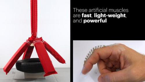 MIT和哈佛造出拥有超大力量人造肌肉:材料不到1美元