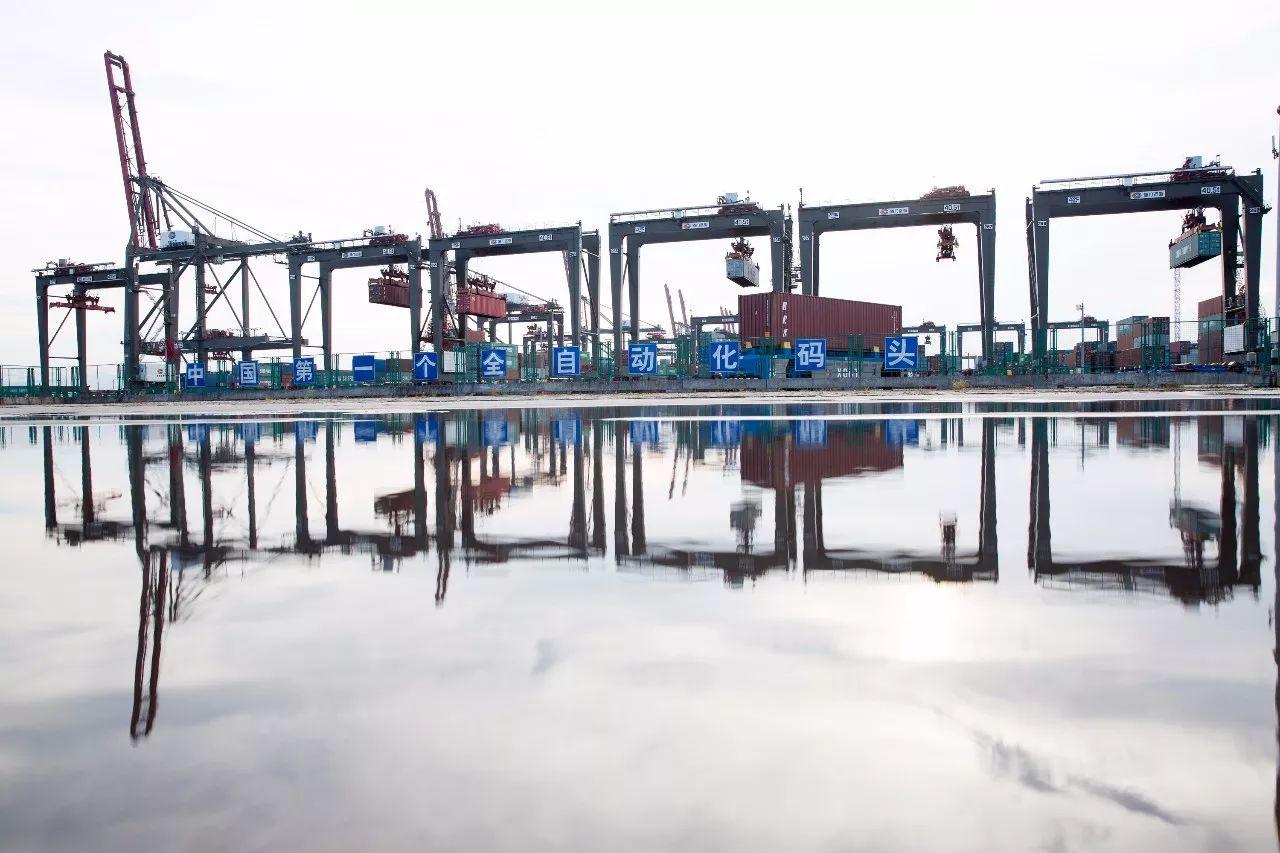8月3日拍摄的忙碌中的厦门远海自动化码头。新华社记者 金立旺 摄