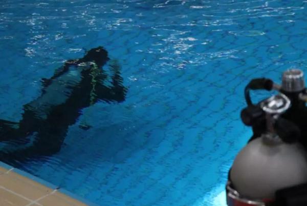 潜水队队员潜水训练。 闵�h 摄