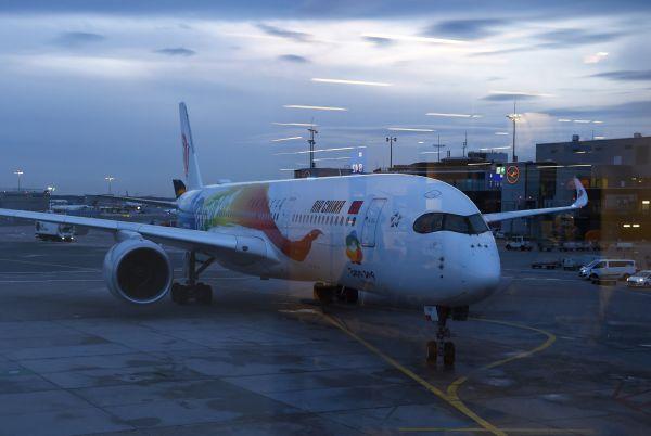 资料图片:执飞中国国际航空公司CA935航班的空客A350-900客机。(新华社)