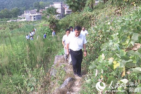 湖北通山:主题教育聚焦为村民办实事