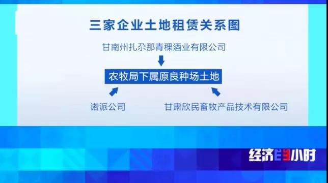 "「as娱乐平台」台湾""中油"":已就澎湖漏油事件赔偿 污染改善"