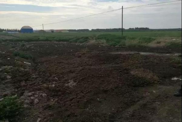 粪污横流,但不远处就是停运的粪污处置核心
