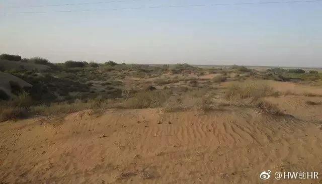 ▲毛乌素沙漠