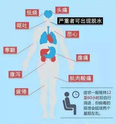 紧急突发!福州近30人呕吐腹泻紧急送医!这种病毒正高发!