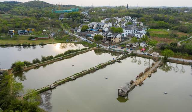 南京江宁打造新乡村生活示范区|江宁|观音殿