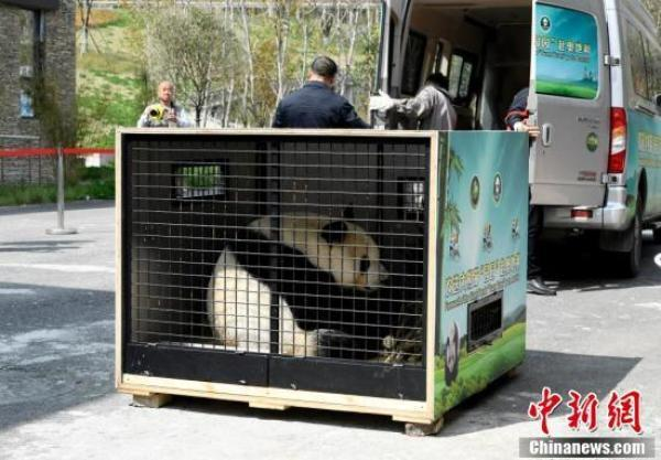 熊猫f21j02行电路图