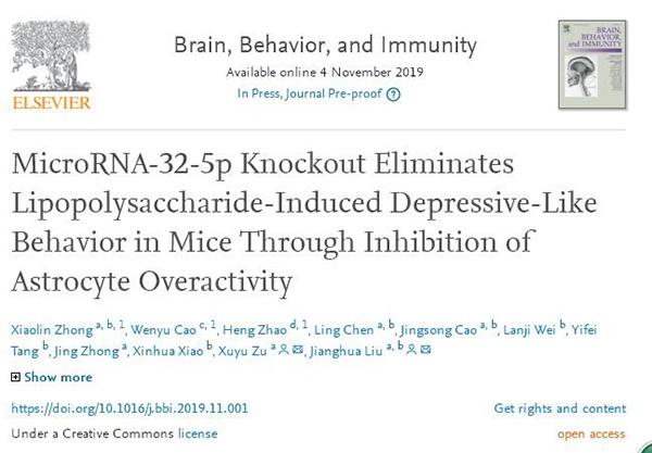 南华附一医院刘江华团队最新研究成果:miRNA-32-5p——为高效抗抑郁药物研究提供新思路