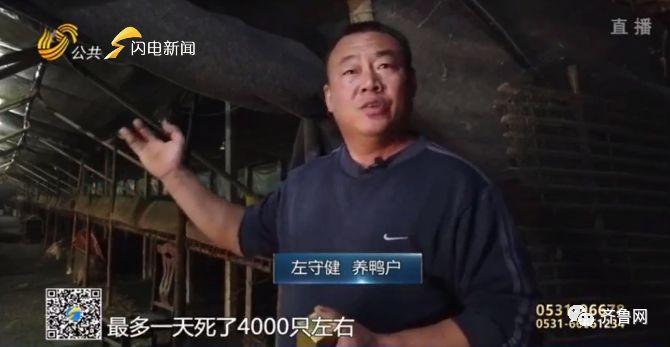 豪爵娱乐 福田中卡驰骋商用车高原巅峰挑战赛 实力展现国典品质