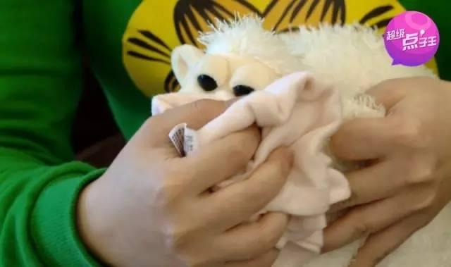 在家也能干洗毛绒玩具!宝宝再也不和细菌一起玩!