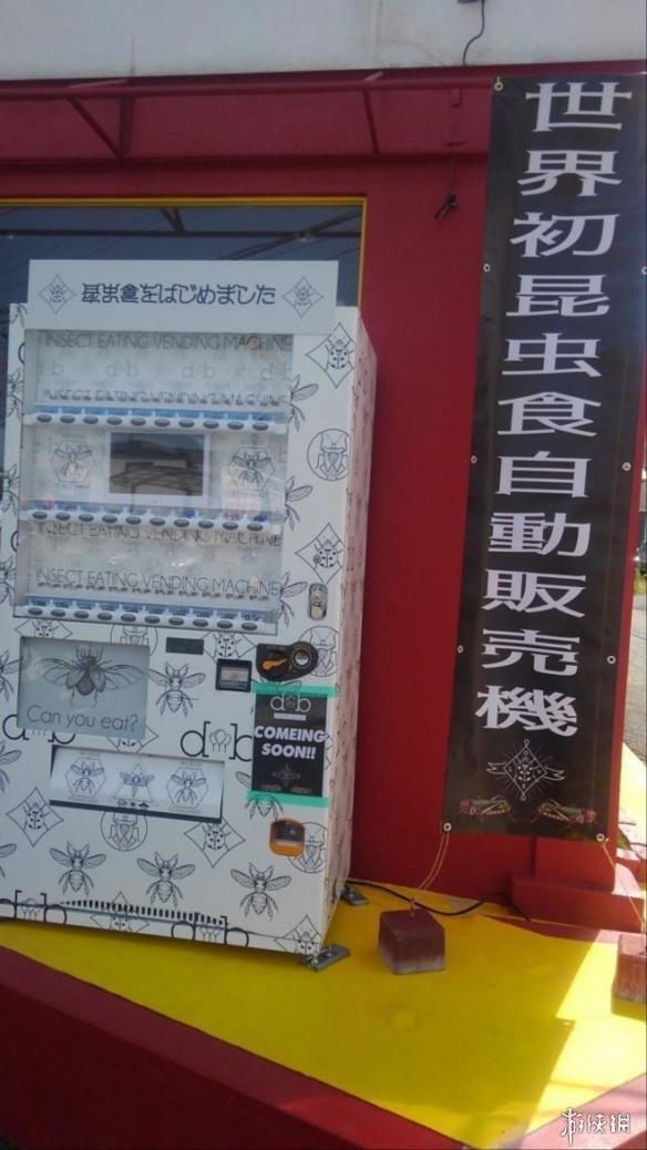 """日本街头现""""世界第一昆虫零食贩卖机"""" 你敢吃吗?"""