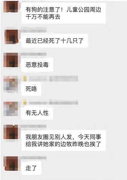 """网传""""南宁白云路一草坪有人恶意投毒""""?狗主人痛诉:已有十几只狗狗离奇死亡【930新闻眼】"""