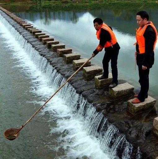 最新消息!江西省市县乡村五级领导又有新职务