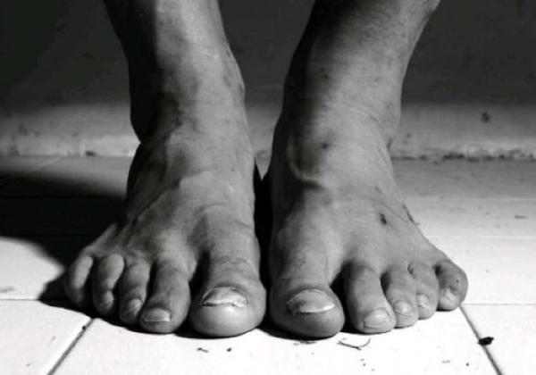 伊布的双脚