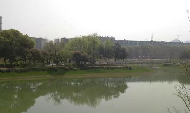 最新详情!南昌新建礼步湖公园发生命案,疑因情感纠纷