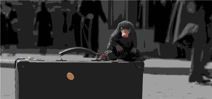 《神奇动物:格林德沃之罪》揭秘 五大看点