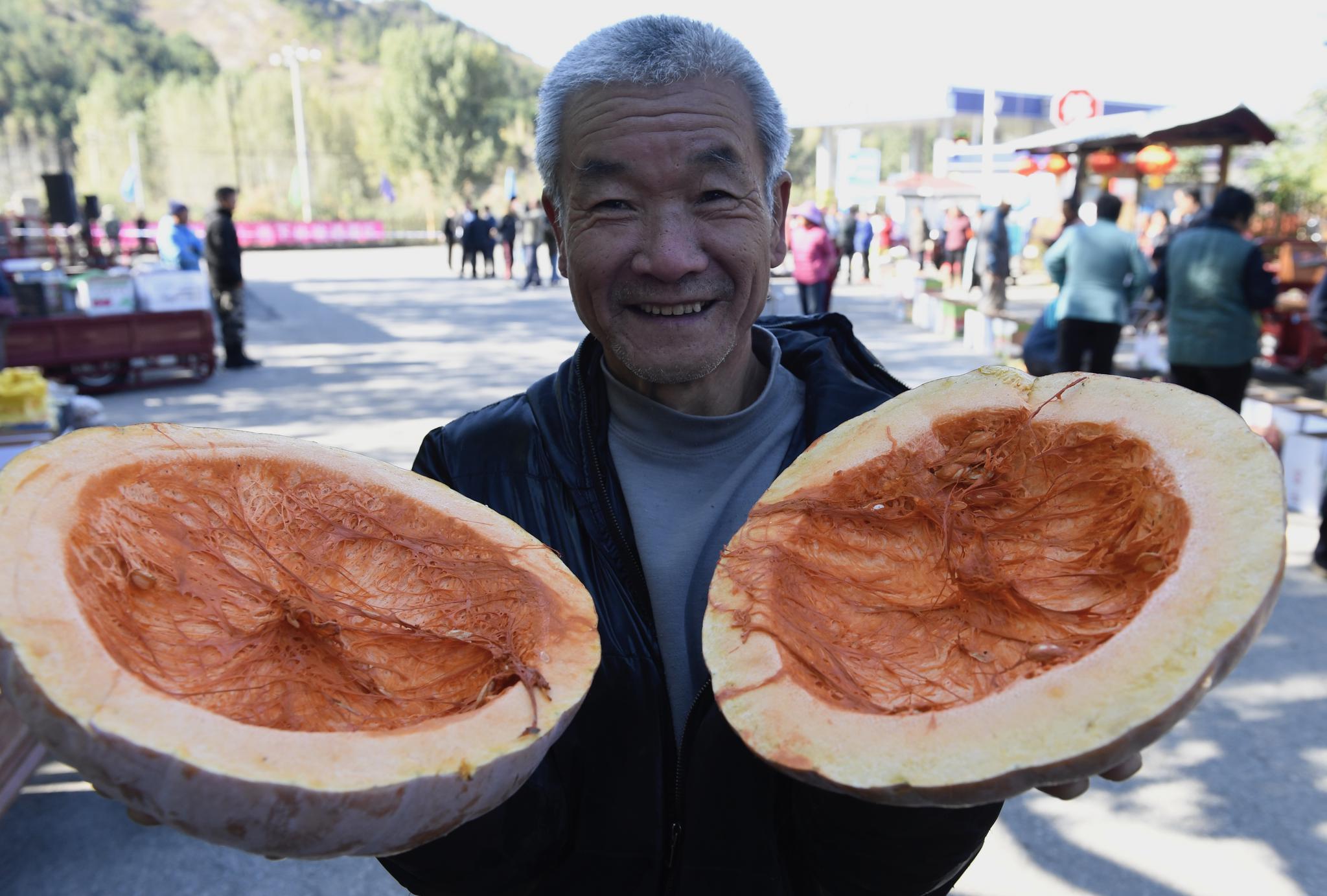 密云新城子万亩苹果成熟,邀市民采摘